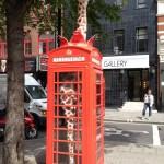 Une girafe dans une cabine téléphonique