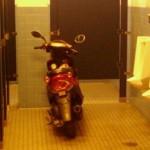 Je gare mon scooter et je vais pisser