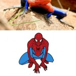 Le lezard a spiderman