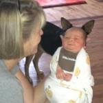 Bébé à oreilles de chien