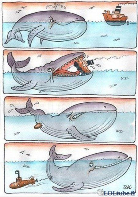 Comment sont fais les sous marins