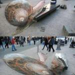 Illusion escargot