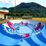 Skate Park aquatique