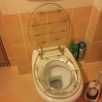 Toilettes barbelés