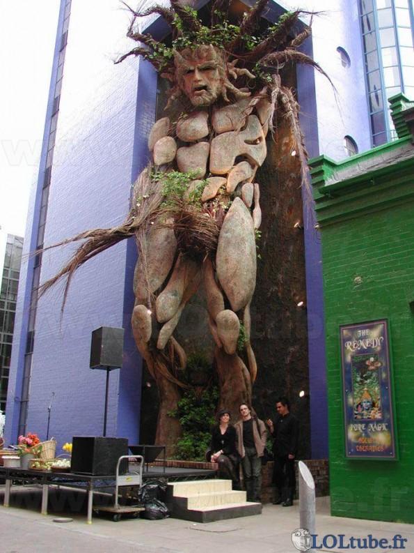 Un homme arbre
