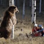 Comment attirer un ours dans une cage