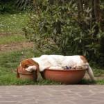 Meilleur endroit pour dormir