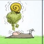 Pet d'escargot