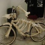 Vélo os