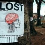 Cerveau, perdu