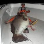 Grosse pêche !