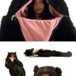 Comment se protéger des ours