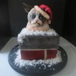 Grumpy cat gateau de noel
