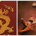 Le dragon millénaire