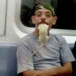 Un rat dans la bouche