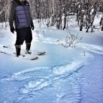 Traces étranges dans la neige