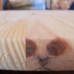 Un visage dans du bois
