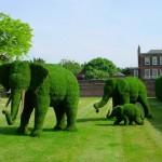 Une famille éléphant