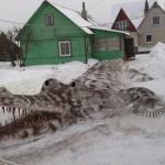 Alligator de neige