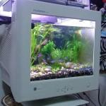 Aquarium de geek