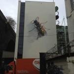 Avez-vous peur des insectes ?