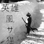 Chat samourai