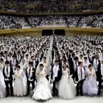 Rendement maximum pour des mariages