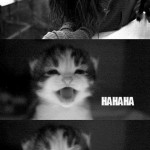 Être un chat ?
