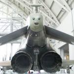 Un visage sur un avion