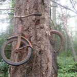 Un voleur de vélo inatendu