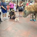Chien vs dinosaure