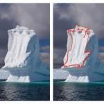 Un chat dans un iceberg