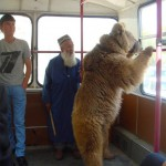 Un type transporte son ours