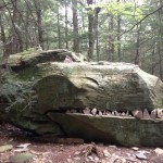 Dinosaure en rocher
