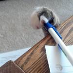 Vol de stylo