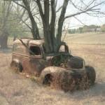Fusion d'un arbre et d'une voiture