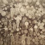 Champ d'arbres coupés
