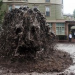Monstre de boue
