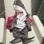 Bébé humain requin