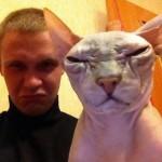 Un chat moche