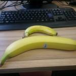 Maxi banane