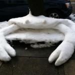 Crabe de neige