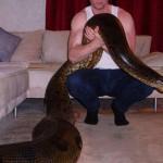 Mon serpent de compagnie