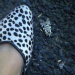 Papillon en moumoute