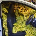 Emmener une banane pour la route