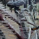 Faire du vélo quand il gèle