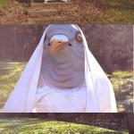 Princesse pigeon