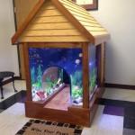 Aquarium et niche de chien