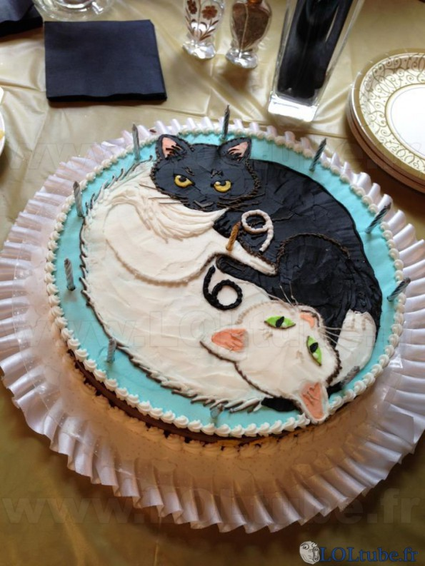 Gateau 69 de chats