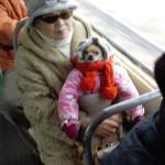 Mamie et son chien chien